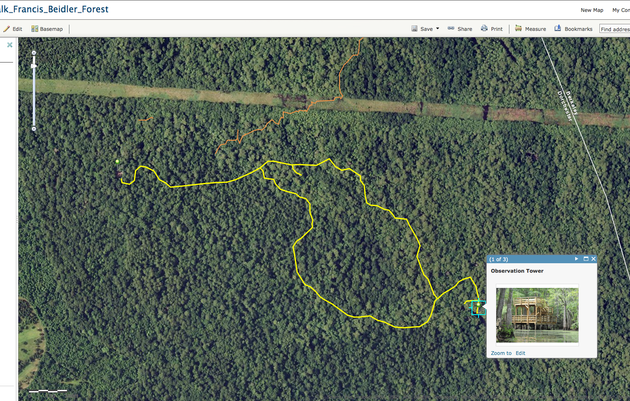 Virtual Tour of Francis Beidler Forest