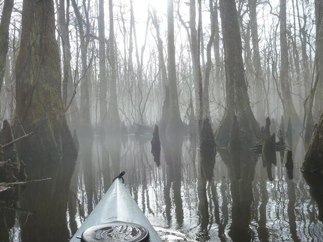 Guided Canoe/Kayak Trips