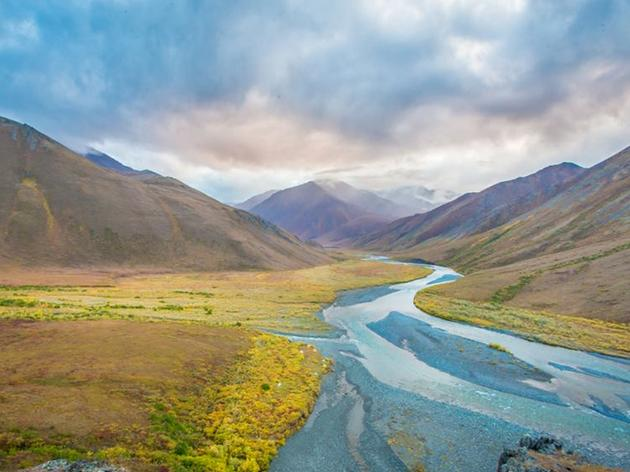 A Careless Congress Threatens the Arctic Refuge