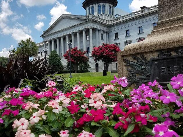 2021 Legislative Session Wraps with Major Policy Wins for Birds and People
