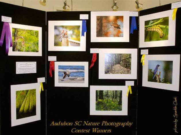 2012 Nature Photography Contest Winners