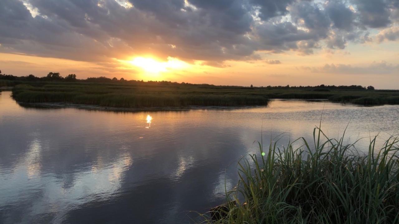 ACE Basin at sunset.