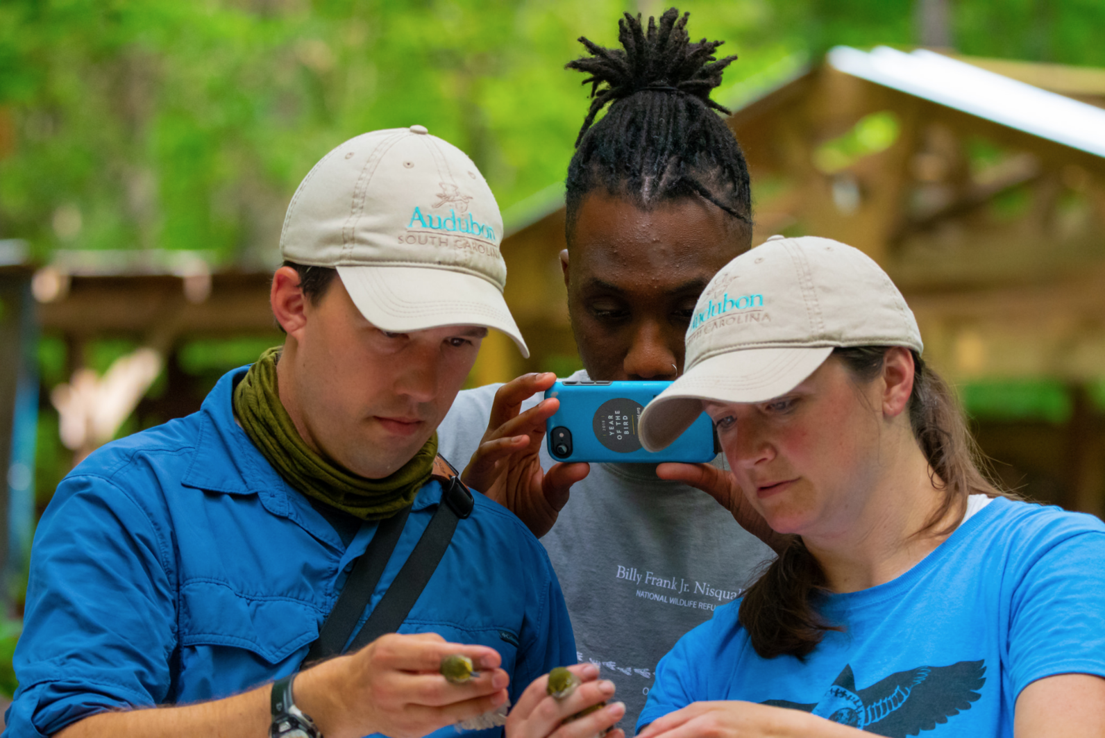 When several birds land in the mist nets at the same time, everybody springs into action. Matt and Jennifer were banding two White-eyed Vireos at once and enlisted Chris to take photographs to compare the two birds.