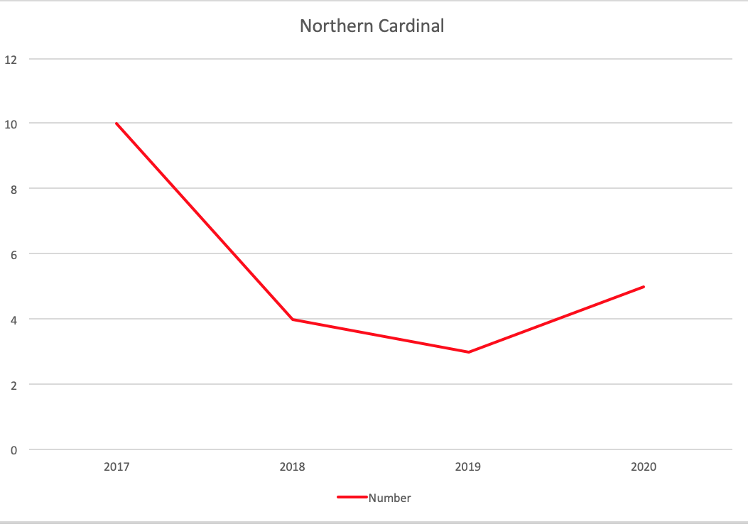 A graph showing Northern Cardinal trends over the four years with a low in 2019